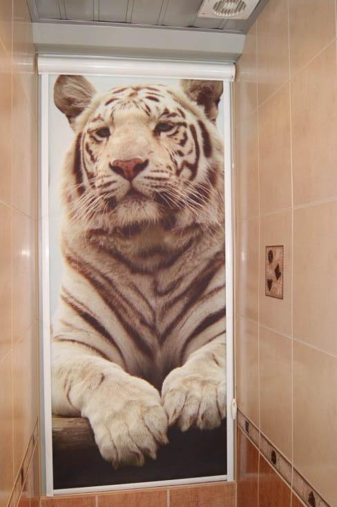 фотообои в туалет: